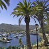 Catalina Island: A Pacific Playground