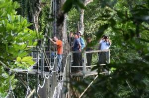 Image source: guyanatimesinternational