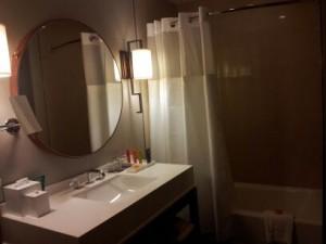 Skyline Guest Bathroom - Photo Credit Erik